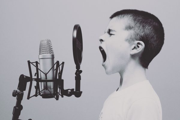 unsur musikalisasi puisi