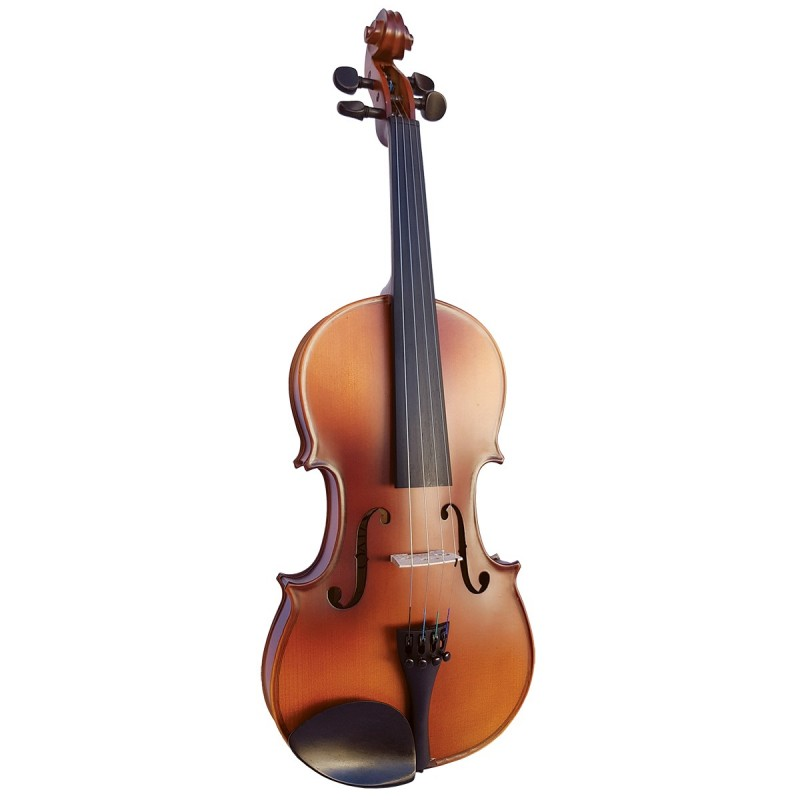 alat musik orkestra viola