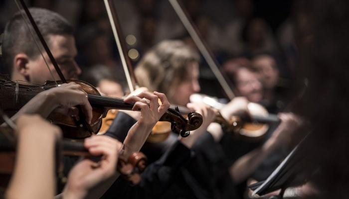 fungsi seni musik